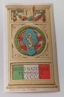 ERINNOFILI VIGNETTE CINDERELLA - FASCIO NAZIONALE FEMMINILE LUCCA - NON DENTELLATO - Cinderellas