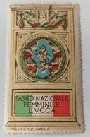 ERINNOFILI VIGNETTE CINDERELLA - FASCIO NAZIONALE FEMMINILE LUCCA - Cinderellas