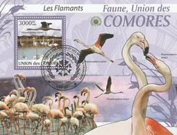 Isole Comore 2009 - Birds - Fenicotteri -  - CTO - Flamingo