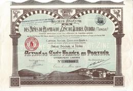 Titre Ancien - Société Anonyme Des Mines De Plomb & De Zinc Du Djebel Oudiba - Tunisie - Titre De 1924 - Déco - - Afrika