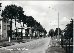 SORAGNA - VIA ROMA - Parma