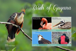 Guyana 2018  Fauna Birds Of Guyana - Guiana (1966-...)