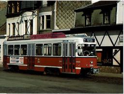 Tram De Lijn   Antwerpen  PCC2164 - Tram