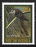 Micronesia - MNH ** 1994 :      Pacific Long-tailed Cuckoo  - Urodynamis Taitensis - Cuckoos & Turacos