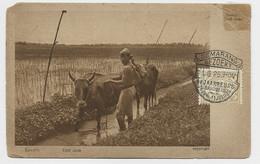 NEDERLAND INDIE 7 1/2C AU RECTO CARD DEFAUT SAWAHS 11.6.26 SEMARANG BEZOEKT TO GERMANY - Nederlands-Indië