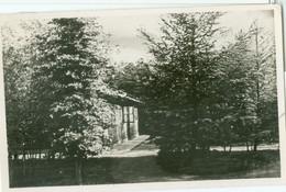 Elspeet 1951; Doopgezinde Broederschapshuis, Naar B. - Gelopen. (G. Dijkgraaf - Elspeet) - Other