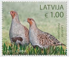 Latvia Lettland Lettonie 2021 (11-1) Birds Of Latvia - Grey Partridge - Lettonia