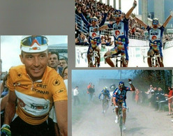 CYCLISME - WIELRENNEN - CICLISMO - 6 PHOTOS REPRODUCTION - JOAN MUSEEUW - Cycling