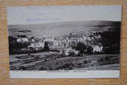 5228/GRAND-HALLEUX  (Ed Duparque Florenville) - Vielsalm