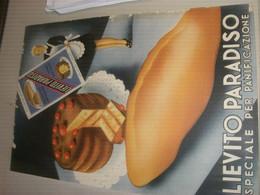 TARGA CARTONE LIEVITO PARADISO - Plaques En Carton
