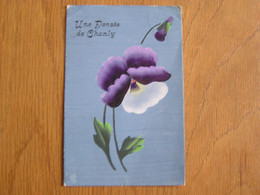 UNE PENSEE DE CHANLY Commune De Wellin Province De Luxembourg  Carte Postale Post Card - Wellin