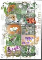 NETHERLANDS, 2021, MNH, EXPERIENCE NATURE, BIRDS, DEER, HORSES, FOXES, HARES,  BUTTERFLIES, FLORA ,SHEETLET - Other