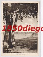 VIGEVANO - IL TICINO F/GRANDE VIAGGIATA 193? - Vigevano