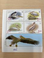 Ukraine 2007 Block WWF Pelican Birds Animals Bird Animal Fauna W.W.F. Organizations Pelicans Stamps MNH - Pelicans