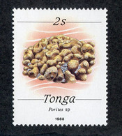 "BC 8115 ""Offers Welcome"" Scott 683 Mnh** - Tonga (1970-...)"