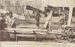 CPA 40 Landes Au Pays Landais Exploitation De Bois De Pin Landaise Landais Au Travail Bucheron - Delboy Bordeaux - Otros Municipios
