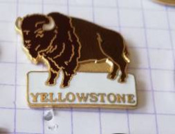 PIN'S - YELLOWSTONE Parc National  - Bison - Animaux