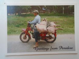 D181690  Nepal  -  Greeting From Paradise  Motorbike - Pigs - Motorbikes