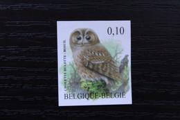 Jaar 2009: 3956 'Buzin: Bosuil' - Ongetand Met Nummer - Zeer Mooi! - Non Dentelés