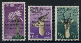 Somalia 1960 Independence Overprint Issue Complete MNH ** Full Orig. Gum, MiNr. 1-3, Cat. €110, An Uncommon Set - Somalia (1960-...)