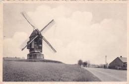 Broc Ellezelles Le Moulin Du Chat Sauvage - Windmills