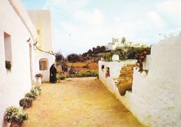 Espagne Ibiza Santa Eulalia Del Rio Casa Ibicena Pati (carte Vierge) - Ibiza