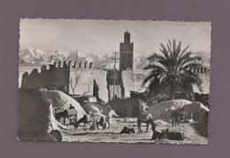 Maroc - MARRAKECH - Un Coin Pittoresque - Marrakesh