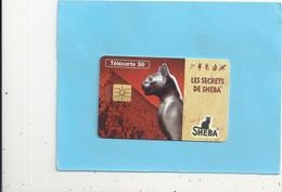 EN 1585.  SHEBA . DEESSE BASTET  . 50 U . 08/96 . SO3 . COTE : 7 € . 2 SCANES - 50 Unità