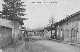 SAINTE LIVIERE  Rue De La Mare Cape - Andere Gemeenten