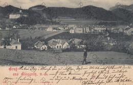 CARTOLINA  GRUS AUS GLOGGNITZ,NEUNKIRCHEN,BASSE AUSTRIA,AUSTRIA,VIAGGIATA - Neunkirchen