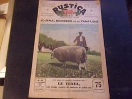 RUSTICA 1937 CHASSE PECHE ELEVAGE JARDINAGE MOUTON RACE TEXEL MACAREUX MOINE - Animali