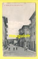PORTUGAL / VISEU / S. PEDRO DO SUL / RUA SERPA PINTO / ANIMÉE / 1913 - Viseu