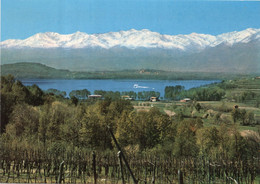 CAVAGLIA' - LAGO DI VIVERONE - (rif. P48) - Biella