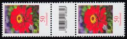 3535 Zinnie 50 Cent Aus 500er-Rolle, Paar Mit Nr, Codierfeld, Ohne Nr. ** - Roulettes