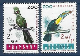 Cob 1218 Touracou Du Sénégal+1219 Toucan à Bec Court  ** - Cuckoos & Turacos