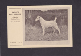 Dog Card -  Spratts Print Advertising Card.  Smooth Fox Terrier.   After Wardle 1902. Card No.14. - Perros