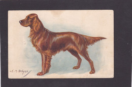 Dog Card -  Irish Setter.   O.E.M. Hollyer. - Perros