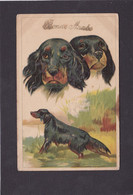 Dog Card -  A Brace Of Pointers/Setters. - Perros