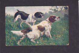 Dog Card - Setter & Pointer. - Perros