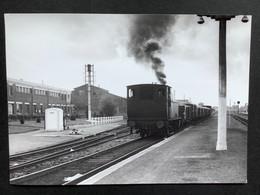 Photographie Originale De J.BAZIN :C.F.secondaires Du Nord-Est : Ligne HAM Gare ST QUENTIN En 1955 - Trains