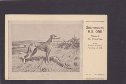 Dog Card -  Spratts Print Advertising Card. Greyhound. 'HS One'.   After Wardle 1918. Card No.29. - Perros