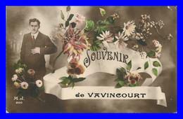 Souvenir De Vavincourt    ( Scan Recto Et Verso ) - Vavincourt