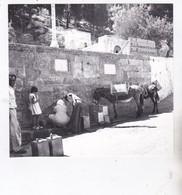 Photo De Particulier Grèce  Ile De Rhodes Lindos Fontaine Dans Un Mur Mules Porteuses D'eau Réf 8940 - Places