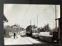 Photographie Originale De J.BAZIN: C.F De MOREZ à NYON. Gare De TRELEX En Suisse En 1958 - Trenes