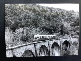 Photographie Originale De J.BAZIN: Autorail Entre FAVERA Et BOCOGNANO En Corse En 1970 - Treni