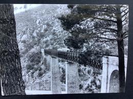 Photographie Originale De J.BAZIN: Autorail Sur Le Pont Du VECCHIO  En Corse En 1970 - Treni
