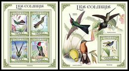 TOGO 2021 - Hummingbirds. M/S + S/S. Official Issue. [TG210214] - Hummingbirds