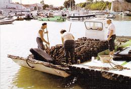 17 Bassin Ostréicole De Marennes Oléron (carte Vierge) - Marennes