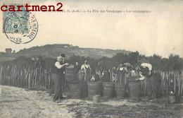 ARGENTEUIL LA FETE DES VENDANGES LES VENDANGEURS VITICULTURE VITICOLE AGRICULTURE 95 - Argenteuil