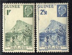 GUINEE  ( POSTE ) : Y&T N°  176/177  TIMBRES  NEUFS  SANS  TRACE  DE  CHARNIERE . A  SAISIR . - Ungebraucht